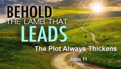 Gospel of John 11