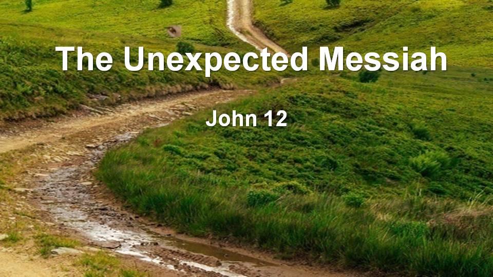 Gospel of John 12 (M)