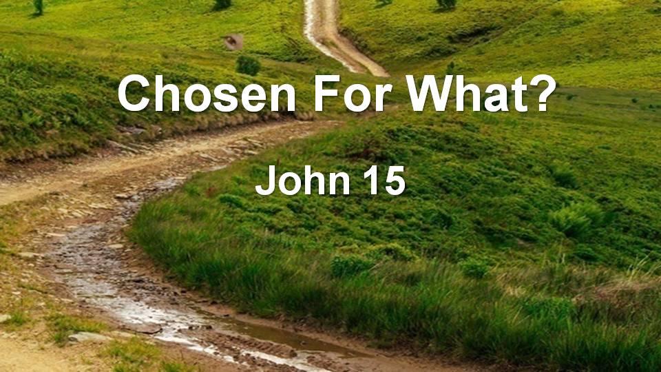 Gospel of John 15 (Recorded Live)