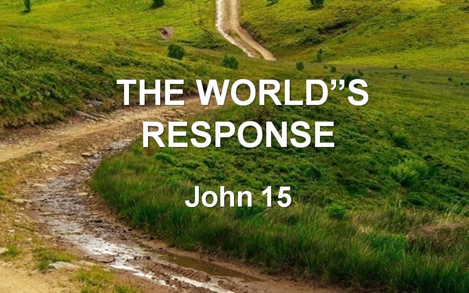 Gospel of John 15